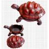 Extra large tortoise