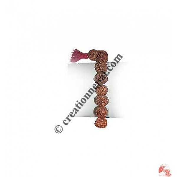27 beads Rudraksha wrist Mala