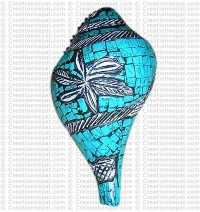 Turquoise conch