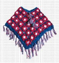 3-color poncho